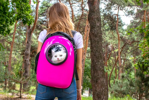Lady walking through woods with cat in cat backpack carrier