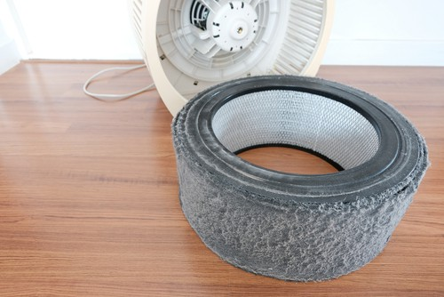 Dirty filter which has collected hair, dust allergens as small as 0.3 microns